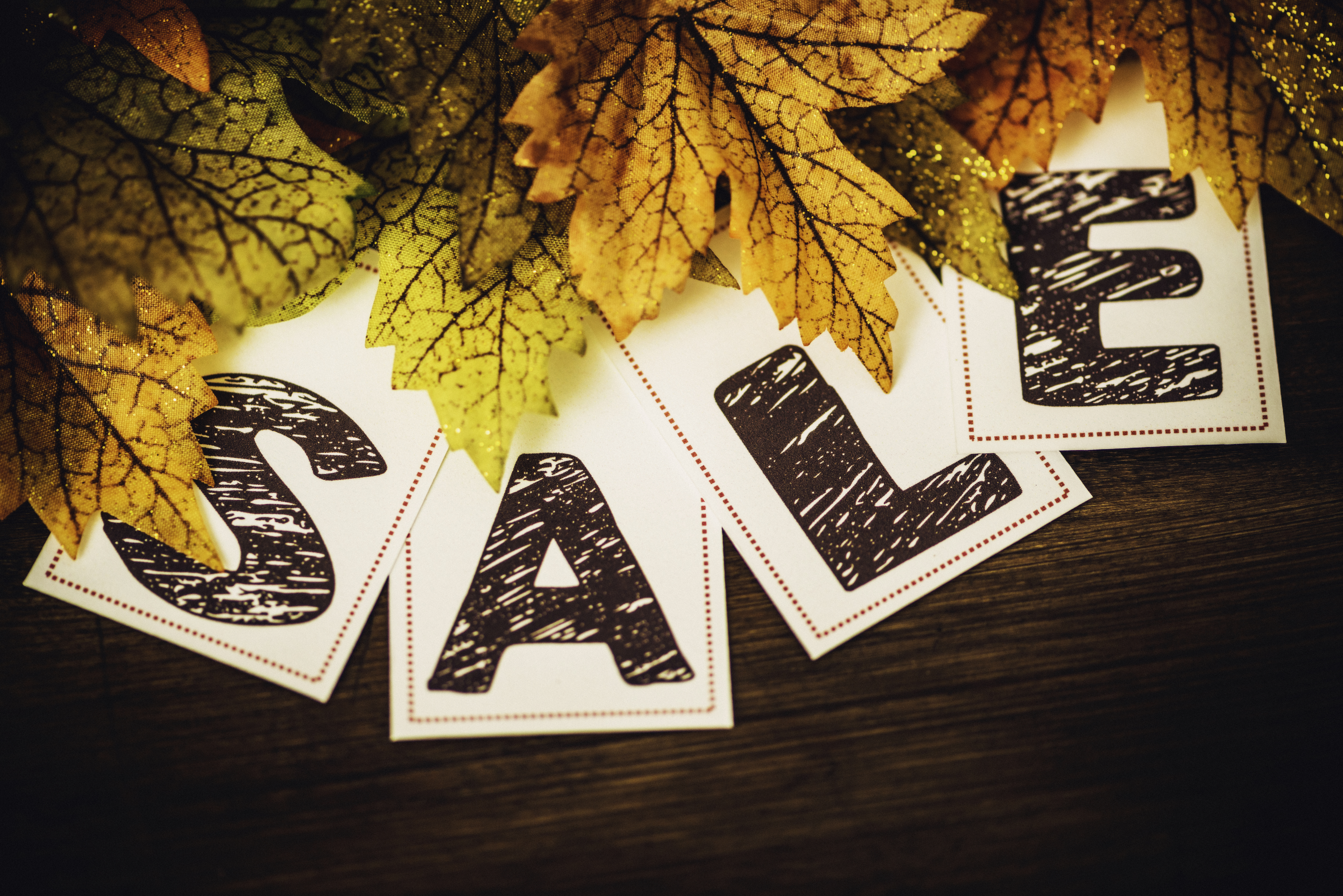 Fall-Sale.-Fall-leaves-with-SALE-message-491673906_7360x4912